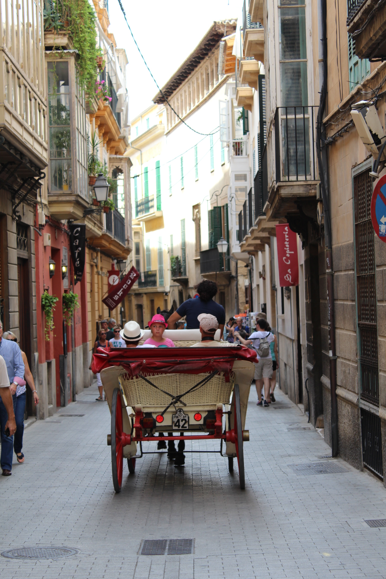Palma street with carriage